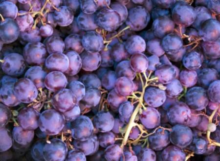 Какую пользу приносит виноград для организма человека